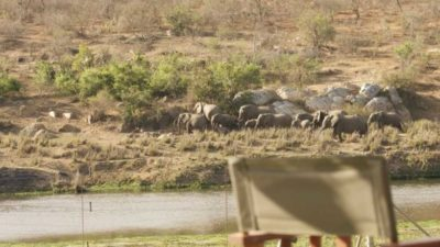 5 star lodges in kruger national park