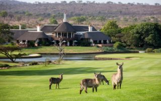 Places to stay Kruger Park